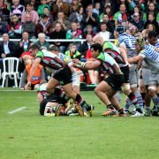 London - Rugby Tours to England - Harlequins