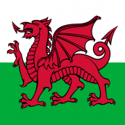 Welsh Flag - Irish Rugby Tours, Rugby Tours To Newport
