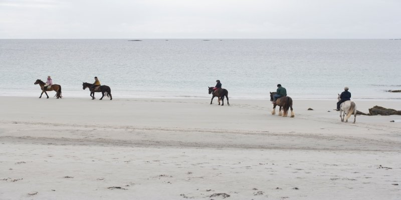 Horse Riding - Irish Rugby Tours, Rugby Tours To Galway