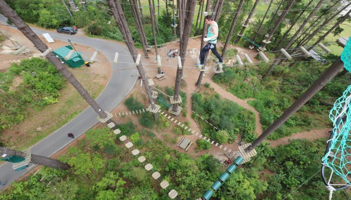 Adrenalin Forest -