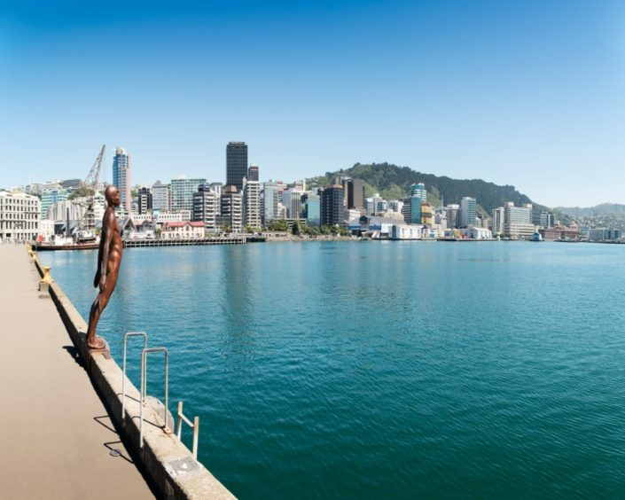 Wellington City, Credit Julian Apse - Rugby Tours To Wellington, Irish Rugby Tours